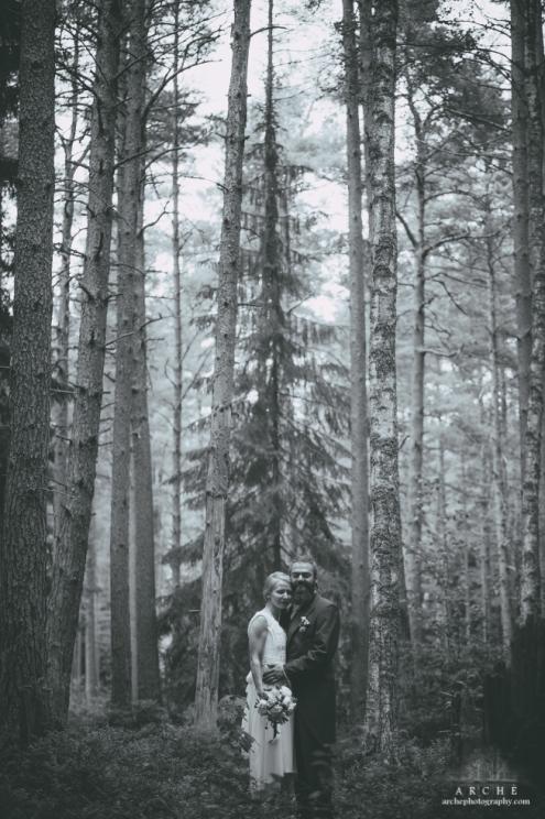 Spirit in the forest - Midsummer